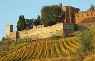 Excursion to the Chianti Region & Visit to Monteriggioni Castle