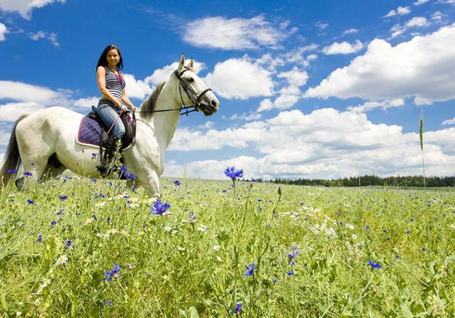Randonnée à cheval dans la campagne toscane - au départ de Sienne - Sienne -