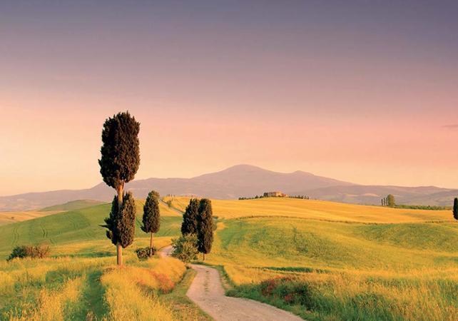 Excursion à Montalcino, Pienza, Montepulciano et dégustation de produits locaux - au départ de Sienne - Sienne -