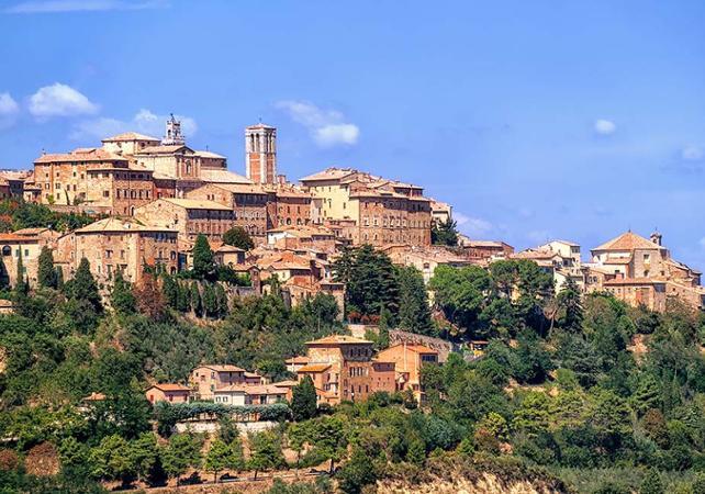 Excursion à San Gimignano, Monteriggioni, et Montalcino - au départ de Sienne - Sienne -