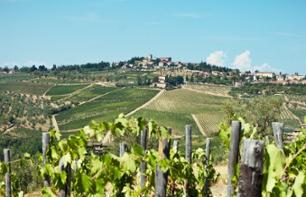 A trip in the Chianti region with wine tasting and a BBQ for lunch - Leaving from Florence