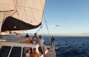 Catamran cruise at sunset with aperitifs - Waianae or Honolulu, Oahu