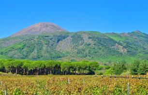 Discover the vineyards of Vesuvius and wine tasting - leaving from Naples
