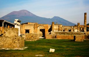 Excursion to Pompeii and discovery of the vineyards around Vesuvius and wine tasting - leaving from Naples