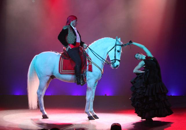 Dîner spectacle cabaret « Son Amar » option Platinium à Majorque - départ/retour hôtel - Palma de Majorque -
