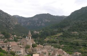 Excursion to the Sóller Valley and Valldemosa Village