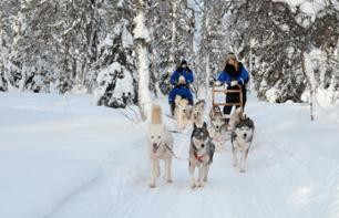 Snowmobile and dog pulled sledge ride and reindeer pulled sledge ride in Lapland - leaving from Rovaniemi