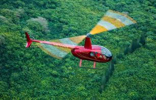 Helicopter flight: Honolulu, south coast, east coast, Sacred Falls and North Shore (1 hour) - Oahu