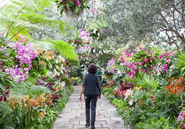 jardin botanique billet jardin botanique new york. Black Bedroom Furniture Sets. Home Design Ideas