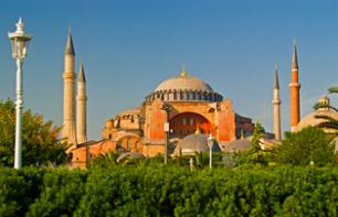 Best of Istanbul: Topkapi Palace, Hagia Sofia, Blue Mosque and the Grand Bazaar - private tour in French