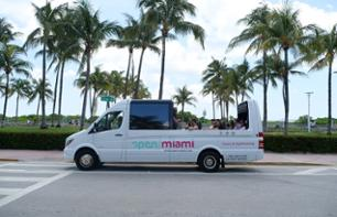 Panoramic Minibus Tour of Miami - Stops in Little Havana and Wynwood