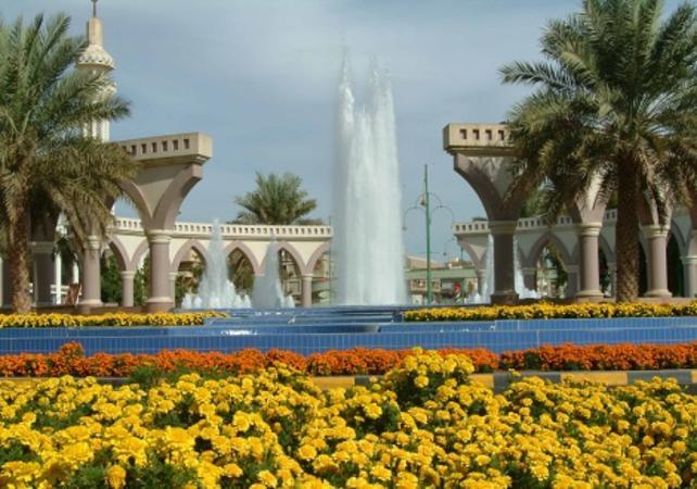 Photo Excursion guidée jusqu'à l'oasis d'Al Ain