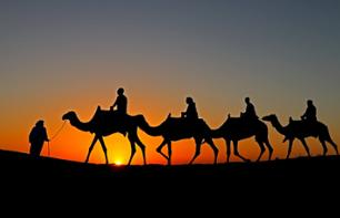 Camel ride in the Dubai desert at sunrise - With traditional breakfast