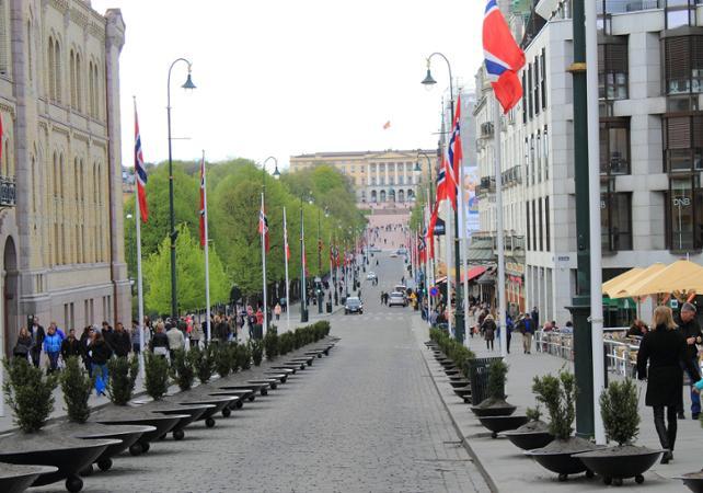 Visite guidée à pied d'Oslo image 2