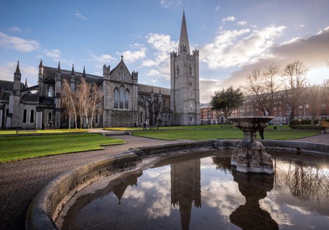 Saint Patrick à Dublin : visite guidée à pied image 4