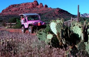 Off-road vehicle excursion to the Diamondback Gulch - Leaving from Sedona
