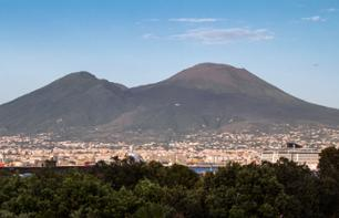 Excursion to Mount Vesuvius - leaving from Naples
