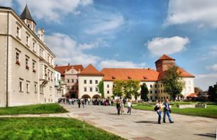 Tour Wawel Castle in Krakow