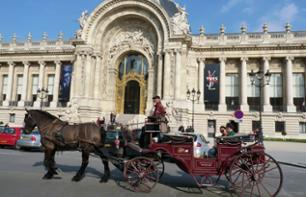 """Romance"" ride in a horse-drawn carriage - 1 hour"
