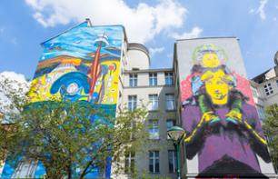 Guided visit of Vienna's street-art