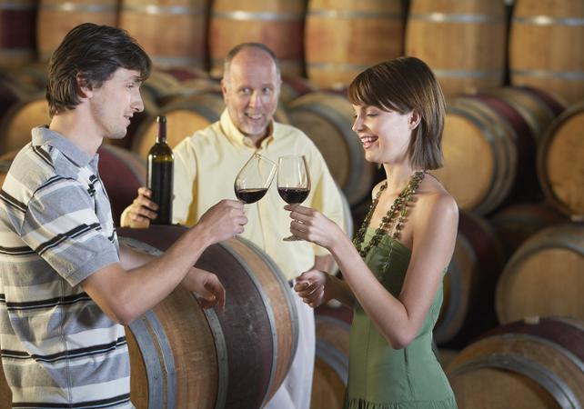 Dégustation dans les vignobles de  Châteauneuf du pape  et  découverte de l'arrière pays provençal - Avignon -