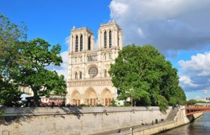 Guided Tour of Paris in a Minibus, Lunch at the Eiffel Tower and Guided Tour of the Louvre Museum