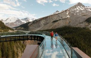 Billet Skywalk du Champ de glace Columbia (Columbia Icefield Skywalk)