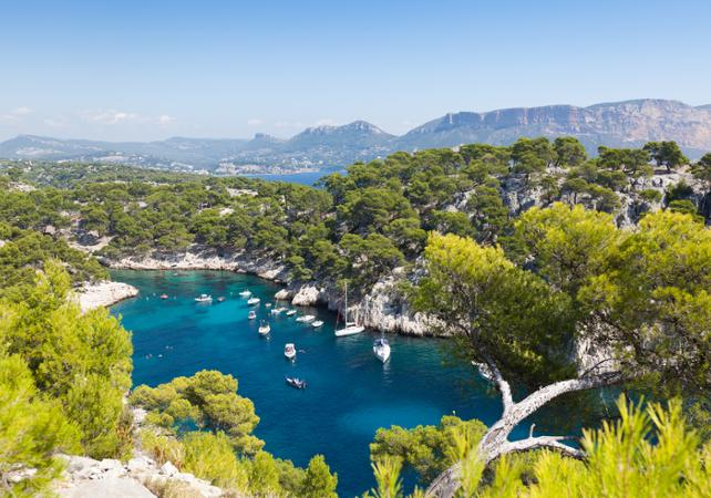 Tour privé : Aix en Provence, Cassis et Marseille