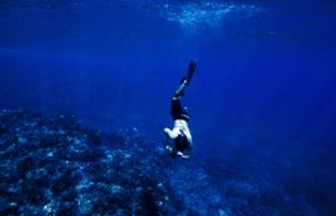 Freediving Apnea Initiation – 20 minutes from Cannes