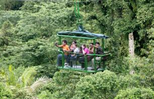 Cable Car and Hike through The Forest– Near Braulio Carrillo National Park