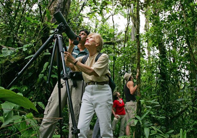 Tour d'observation des oiseaux au coeur de la forêt - A proximité du Parc national Braulio Carrillo - San José (Costa Rica) -
