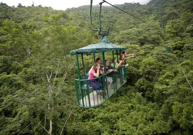 Traversée de la canopée en téléphérique et balade en forêt - Sur la côte Pacifique - San José (Costa Rica) -