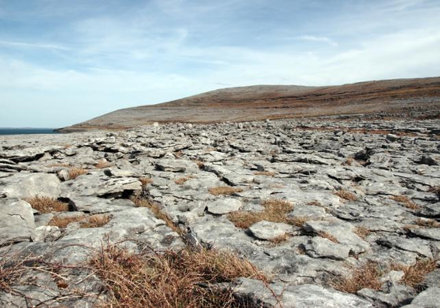 Excursion d'une journée en train pour découvrir Limerick, Burren et les falaises de Moher ! image 5