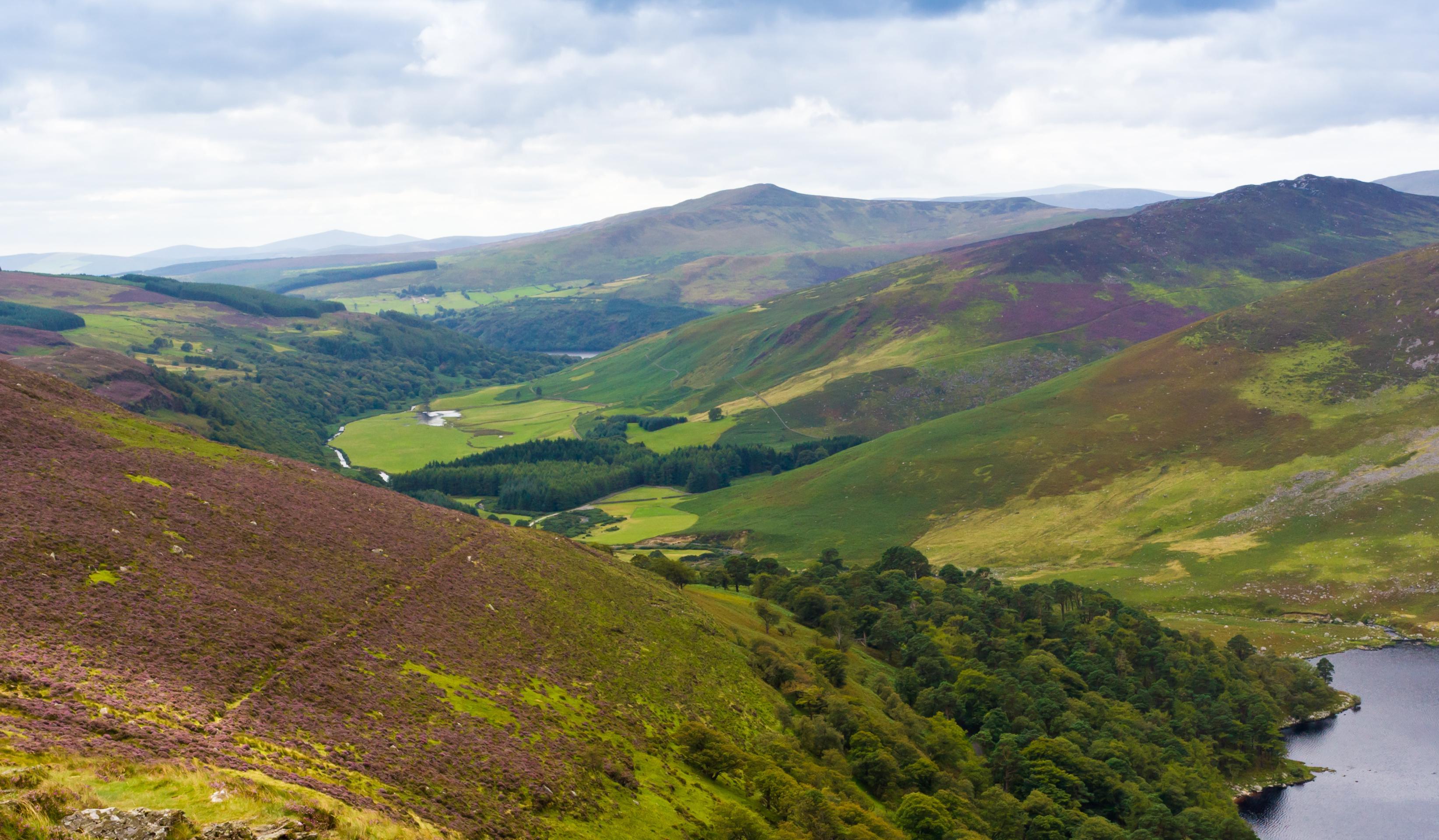 ,Excursión a Wicklow,Excursión a Wicklow y Glendalough,Excursión a Glendalough y Wicklow