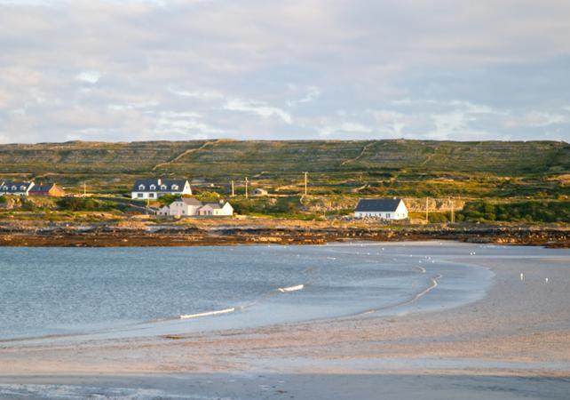 Excursion à Galway et aux îles d'Aran au départ de Dublin image 1