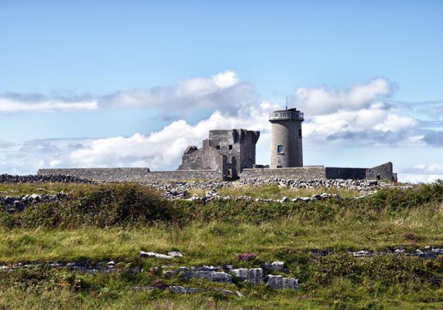Excursion à Galway et aux îles d'Aran au départ de Dublin image 2