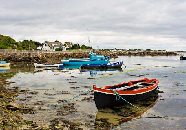 Excursion à Galway et aux îles d'Aran au départ de Dublin image 3