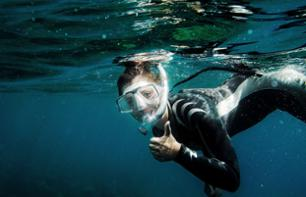 Apnea Initiation or Swimming with Flippers/Mask/Snorkel – 20 minutes from Central Nice