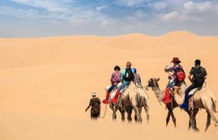 Camel ride in the desert - departing from dubai