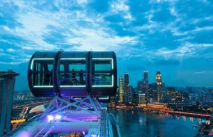 Singapore Flyer (Ferris Wheel) Tickets and Optional Dinner - Transport to/from Hotel