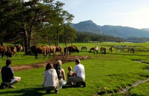 Safari by Foot in the Mont d'Azur Wildlife Reserve – 80 minutes from Cannes and Nice