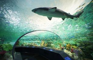 Fast-Track Tickets to Ripley's Aquarium of Canada – Toronto