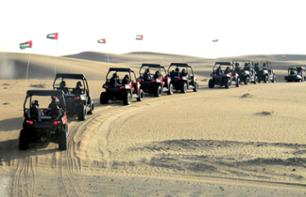 Drive a Buggy in the dunes and BBQ dinner in a Bedouin camp.