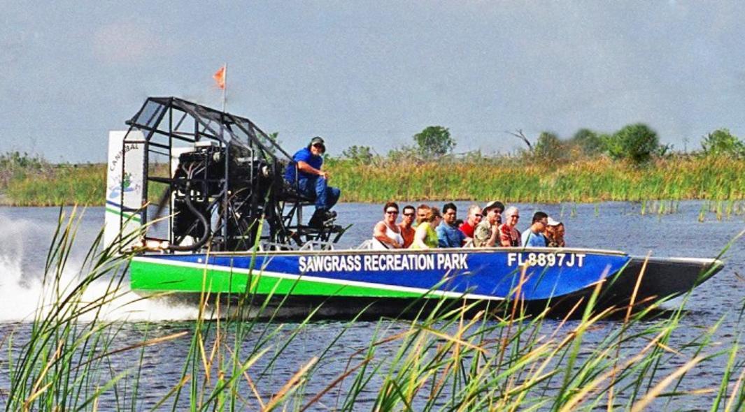 Ver la ciudad,Visitas en barco o acuáticas,Excursión Everglades