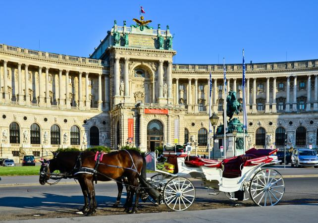 Visite du Palais Hofburg et du Château de Schönbrunn, dîner romantique et concert image 1