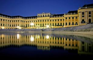 Danube Cruise followed by Romantic Dinner and Concert at Schönbrunn Palace