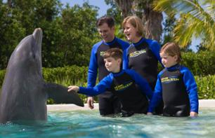 Dolphin Encounter + Admission to Miami Seaquarium