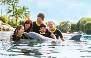 Discovery Cove Orland - Interactive park - Swim with the dolphins and other aquatic animals