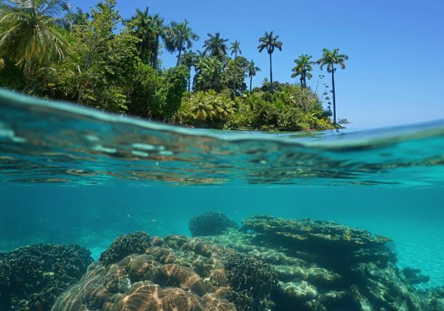 Observation en bateau visiobul des fonds marins de La Réunion - La Réunion et ses sites touristiques -