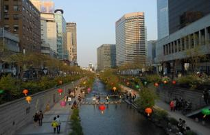 Guided visit to the Korean National Museum and walk along the Cheonggyecheon stream